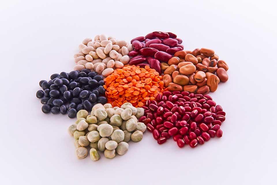 Miscellaneous beans